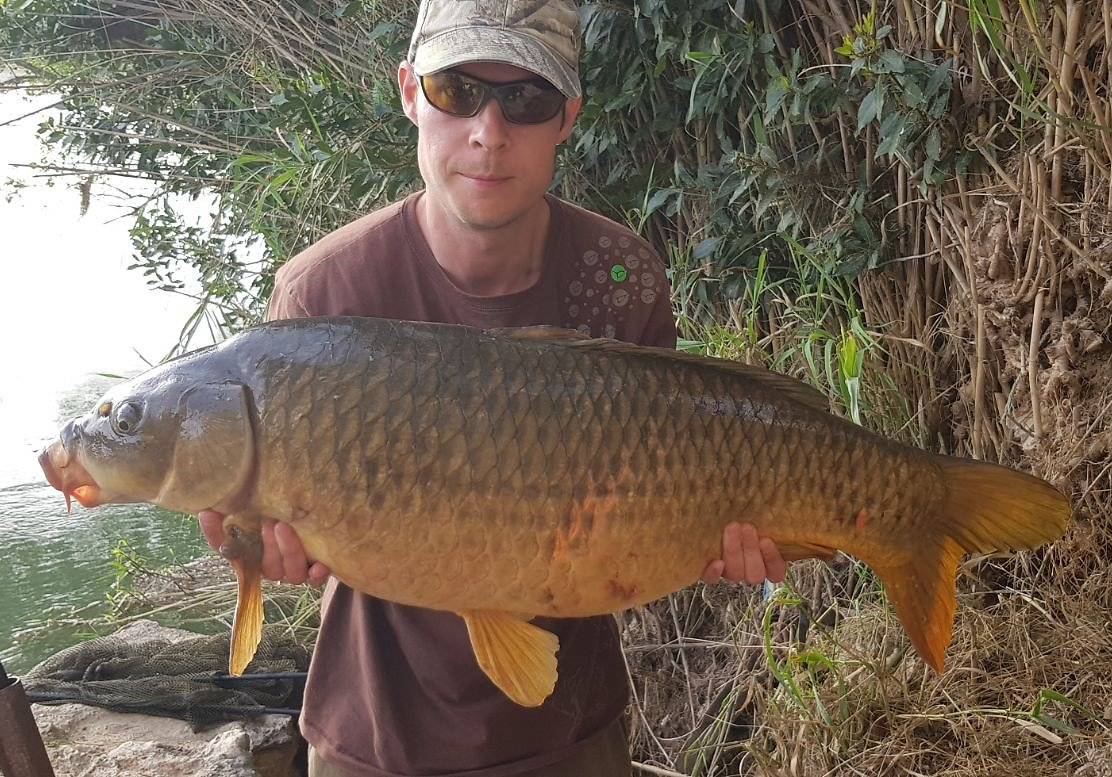 Carp fishing the River Ebro. Jim37lb8ozside1