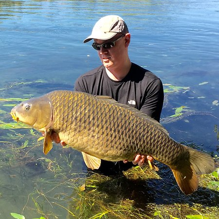 Carp fishing the River Ebro. raimon35carp